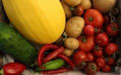 homegrown vegetables.jpg